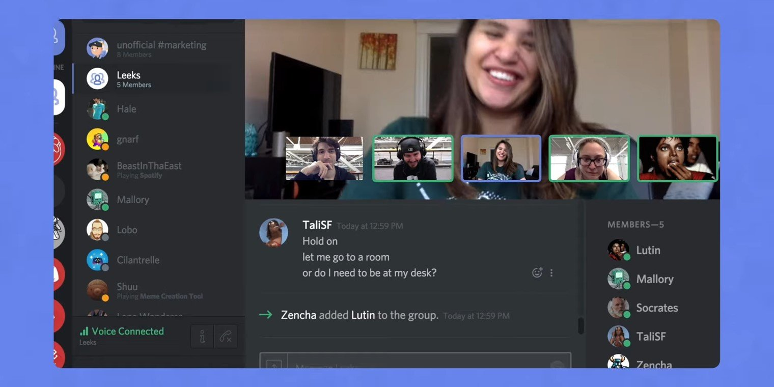 Screenshot of a Discord Video Chat