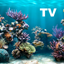 Aquarium HD icon