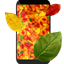 Autumn Leaves 3D Live Wallpaper icon