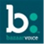 Bazaarvoice icon