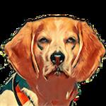 Beagle IM Icon