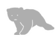 Bear File Converter icon