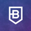 BitDegree icon