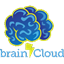 brainCloud icon