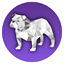 Bulldock Browser icon