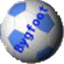 Bygfoot Football Manager icon
