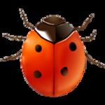 coccinella icon