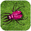 Critter Zapper icon
