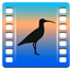 Curlew icon