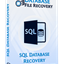 Databasefilerecovery SQL Database Recovery icon