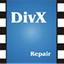 DivXRepair icon