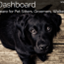 Doggie Dashboard icon