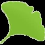 Gingko icon