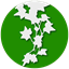 Ivy (Sidebar, Widgets, RSS) icon