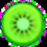 Kiwi Application Monitor Icon