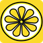 Lemon Group Messenger icon