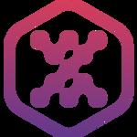 LocalXpose icon