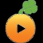 Lucky Orange Icon