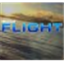 Microsoft Flight icon