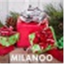 Milanoo icon