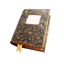 Nomad Reader icon