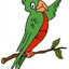 PrivacyParrot icon