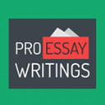 ProEssayWritings Icon