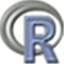 R (programming language) Icon