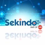 Sekindo - Universal McCann Icon