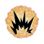 Self-Destructing Cookies icon