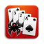 Spider Solitaire 444 icon