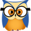 Stat Owl icon