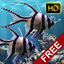 The real aquarium HD icon