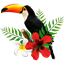 Toucan Tasks icon