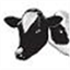 tucows icon