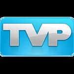 TVPaint Animation icon