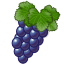 Vineyard icon