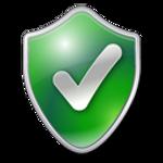 Privacy Icon W10