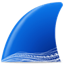 Wireshark icon