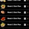 12 Weeks Plan icon