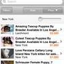 OLX on Iphone(2)