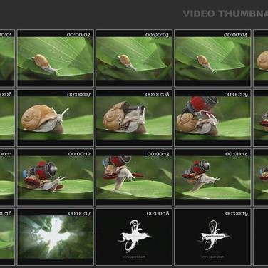 Video Thumbnails Maker Alternatives and Similar Software