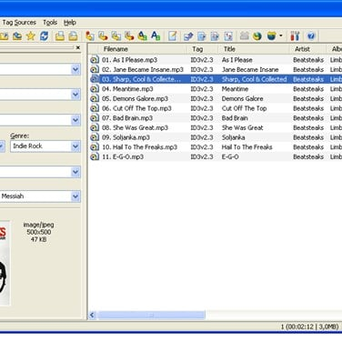 Mp3tag Alternatives and Similar Software - AlternativeTo net