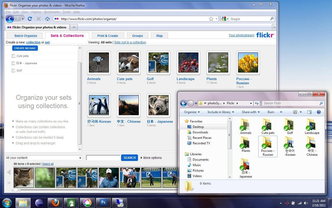 photoSync for Flickr Alternatives and Similar Software