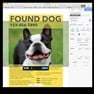 Found dog in Apple Pages. icon