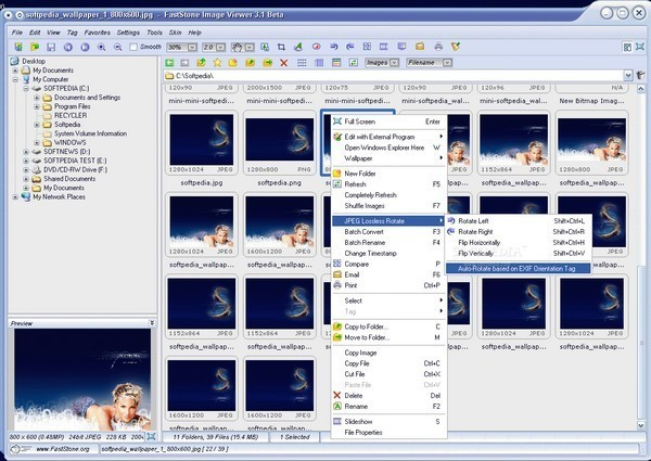FastStone Image Viewer Alternatives and Similar Software