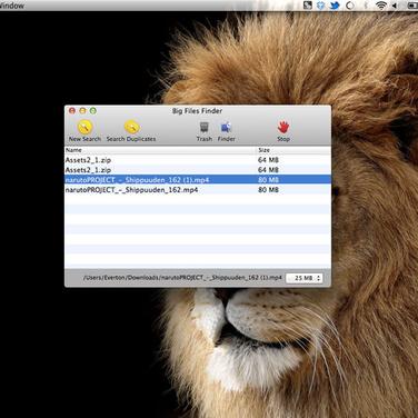 Big Files Finder Alternatives and Similar Software