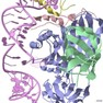 Crystal structure of an H/ACA box RNP from Pyrococcus furiosus