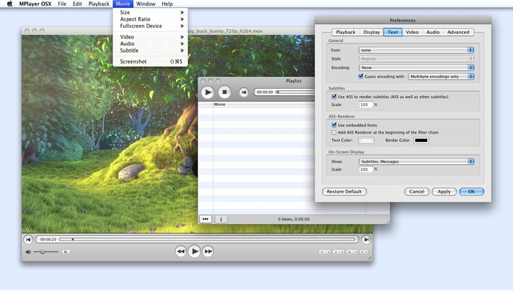 MPlayer OSX Extended Alternatives and Similar Software