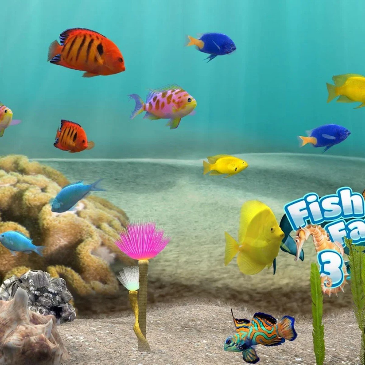 fish farm 3 3d aquarium live wallpaper 929140 full